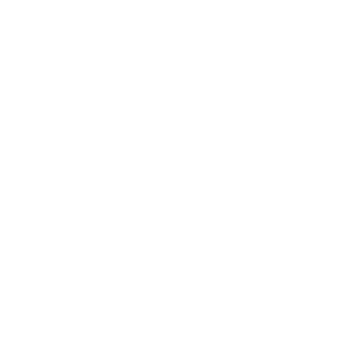 MINNESOTA STARS